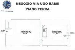 PIANTINA (2)